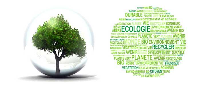 Top Développement durable | Fornel EC61